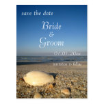SAVE THE DATE - Shells on Beach Post Cards