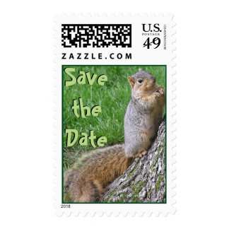 Save the date squirrel postage stamp