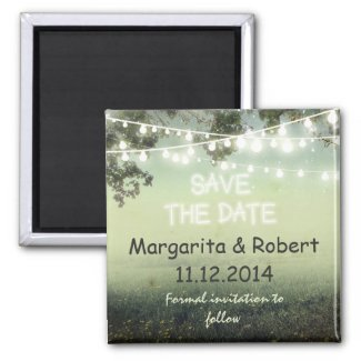 save the date string lights magnets magnets