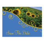 Save The Date - Sunflowers Post Cards