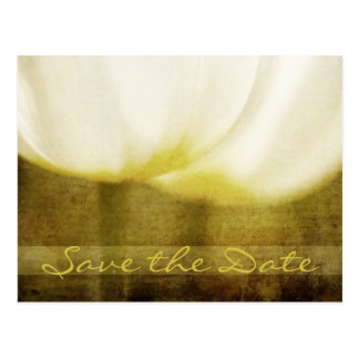 Save the Date Tulips Postcard