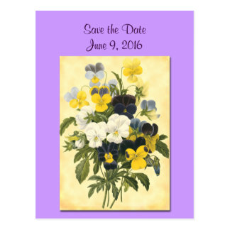 Save the Date Violets and Pansy Postcard
