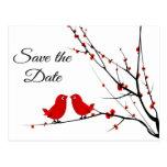 Save the Date Wedding Love Birds Photo Post Card Postcard