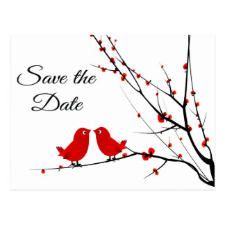 Save the Date Wedding Love Birds Photo Post Card