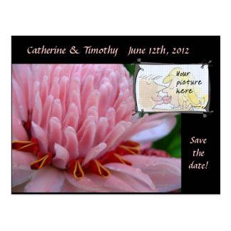 Save the Date Wedding Postcards Custom Photo