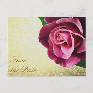Save the Date Wine Colored Rose Postcard postcard