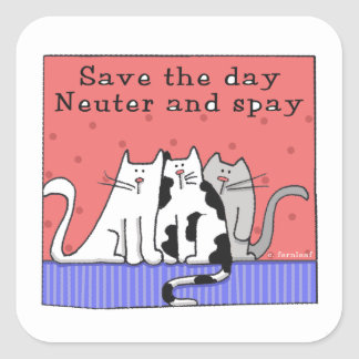Save the Day, Neuter and Spay Square Stickers