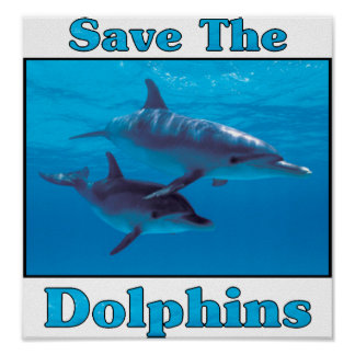 Save the Dolphins Poster