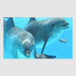 Save The Dolphins Rectangular Stickers