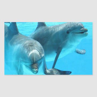 Save The Dolphins Rectangular Sticker