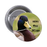 Save The Ducks Button