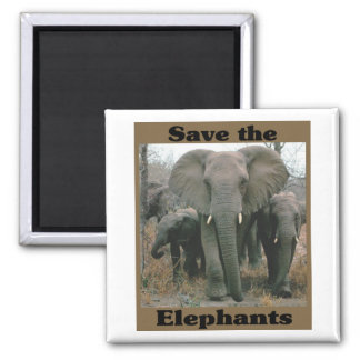 Save the Elephants 2 Inch Square Magnet