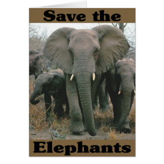 Save the Elephants Card
