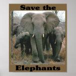 Save the Elephants Print