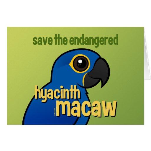 Save the Endangered Hyacinth Macaw Greeting Card