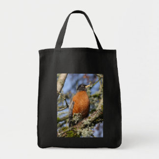 Save the envioronment for me? canvas bags