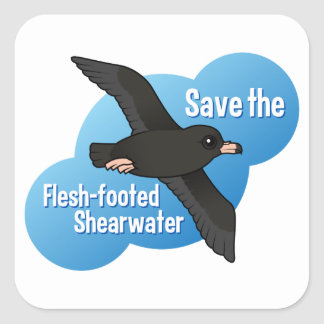 Save the Flesh-footed Shearwater Square Sticker