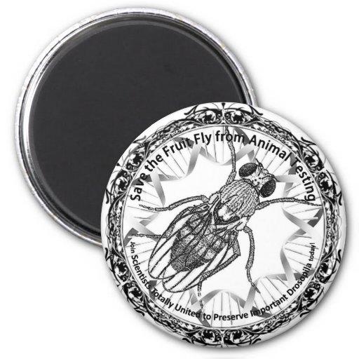 Save the fruit fly! fridge magnets