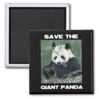 Save the Giant Panda 2 Inch Square Magnet