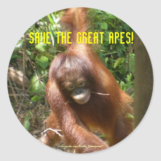 Save the Great Apes Sticker