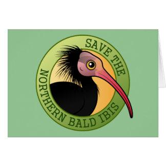 Save the Northern Bald Ibis Card