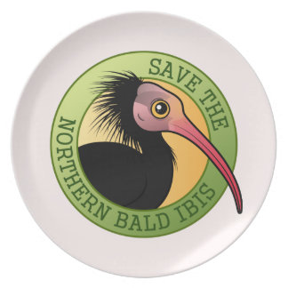 Save the Northern Bald Ibis Dinner Plate