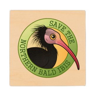 Save the Northern Bald Ibis Wooden Coaster