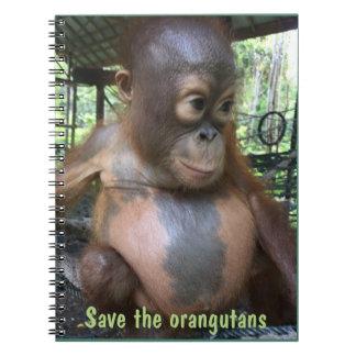 Save the Orangutans baby in Borneo Spiral Notebook