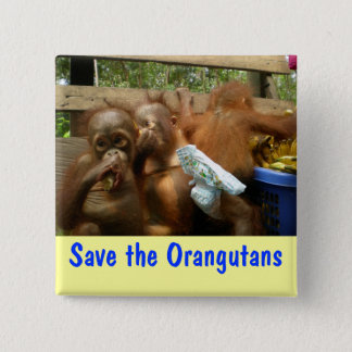 Save the Orangutans Pinback Button