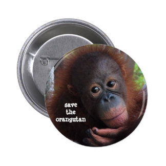 Save the Orangutans! Pinback Button