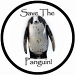 Save The Panguin! Photo Cutouts