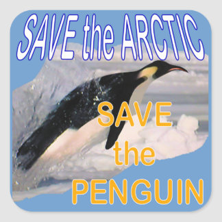 Save the penguin eco-friendly square sticker
