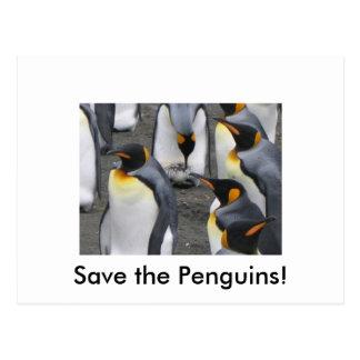 Save the Penguins! Postcard
