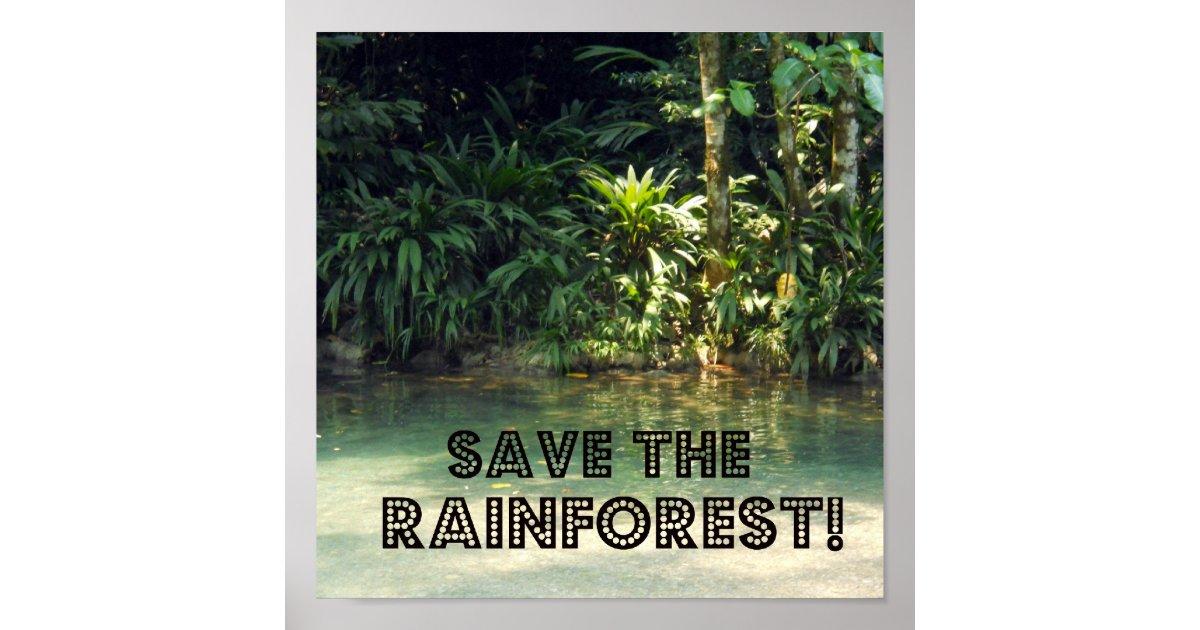 Save The Rainforest Poster Zazzle Com