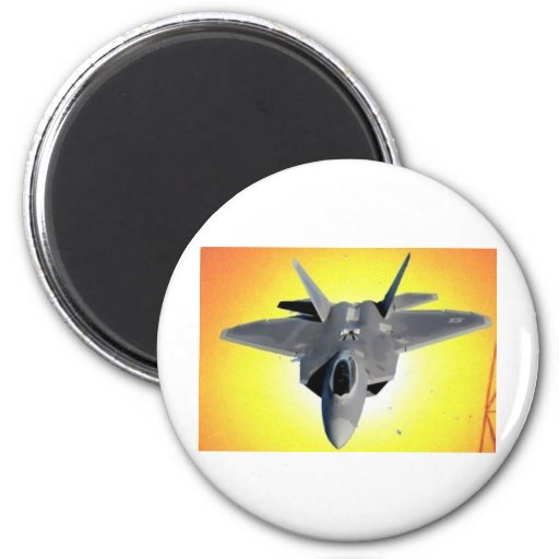 SAVE THE RAPTOR 2 INCH ROUND MAGNET
