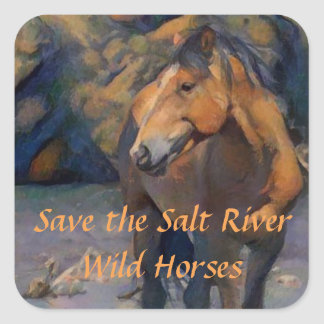 Save the Salt River Wild Horses Stickers