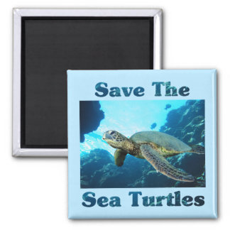 Save the Sea Turtles 2 Inch Square Magnet