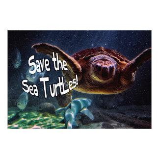 Save the Sea Turtles Animal Photo