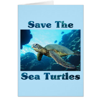 Save the Sea Turtles Card