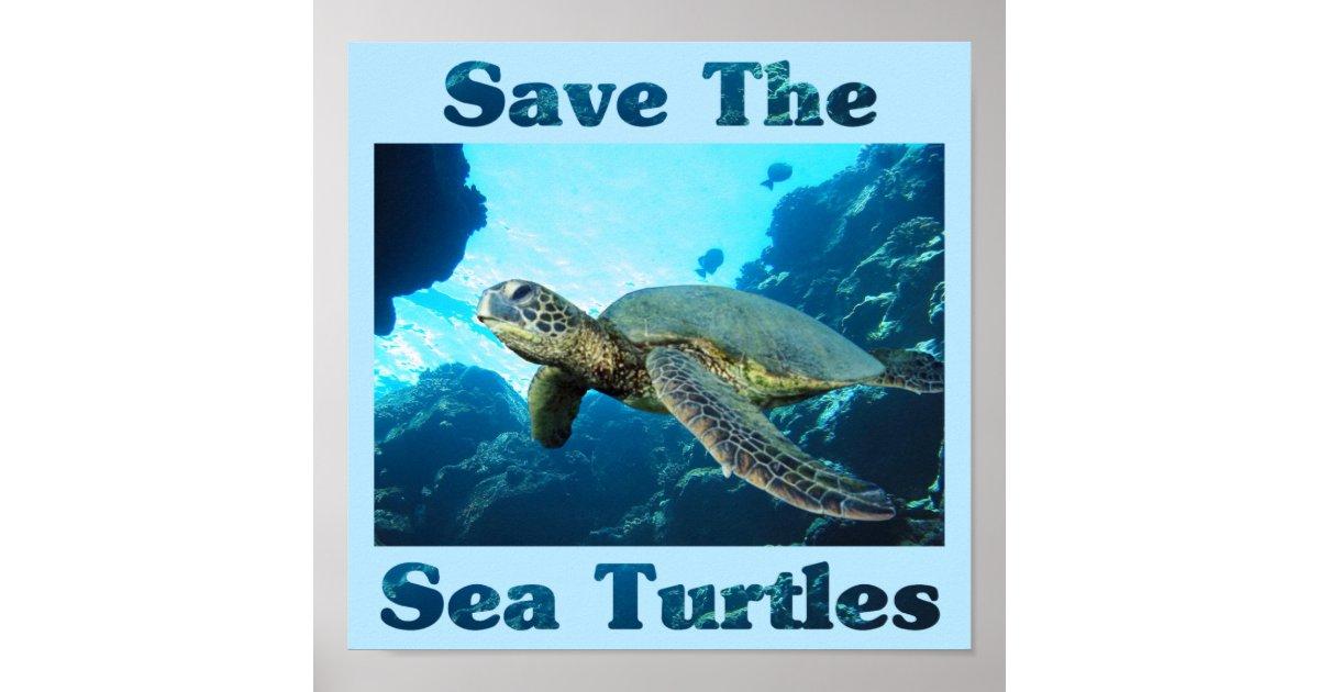 Save the Sea Turtles Poster | Zazzle