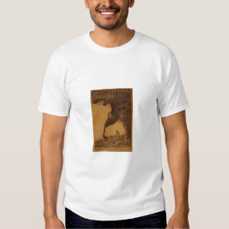 Save the Serbians from Cholera T Shirt