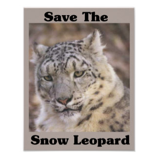 Save the Snow Leopard Poster