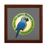 Save the Spix's Macaw from Extinction Trinket Box