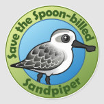 Save the Spoon-billed Sandpiper Round Stickers