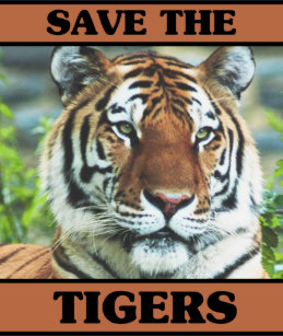 how to make a poster on save tiger