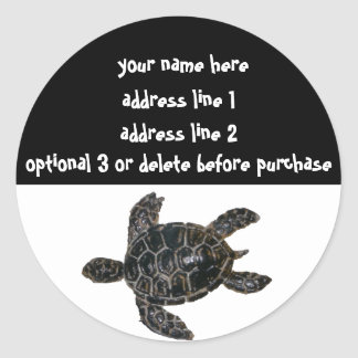 Save the Turtles Address Labels