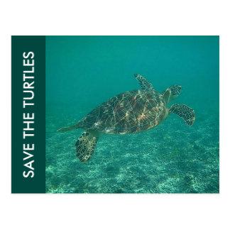 save the turtles postcard
