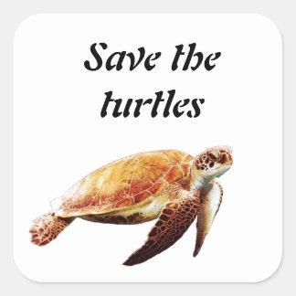 Save the turtles square sticker