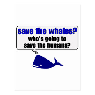 Save The Whales? Postcard