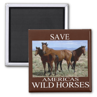 Save the Wild Horses Magnet